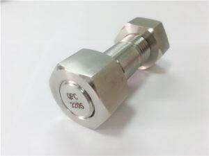 No.75-Högkvalitativ duplex 2205 rostfri stålbult
